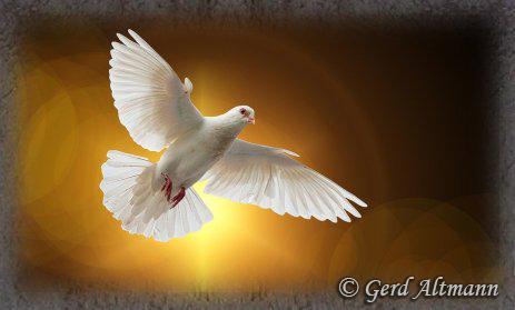 Pentecôte - Visuel